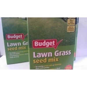 Lawn Seed Economy 750g
